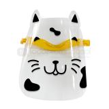 Careta protectora gato